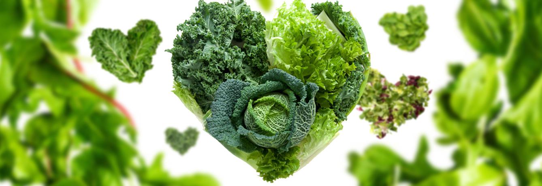 Dark-Leafy-Green