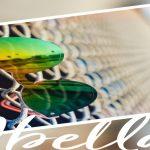 Abella Eyewear Glasses