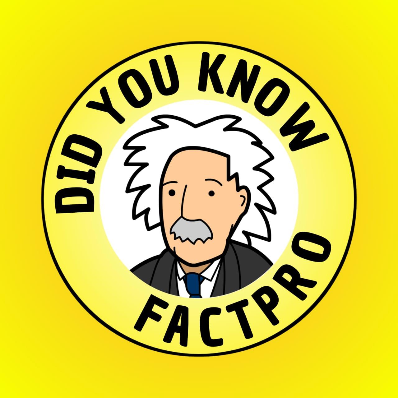 Fact Pro