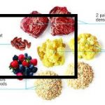 fat protein efficient diet