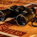 best binoculars under $300