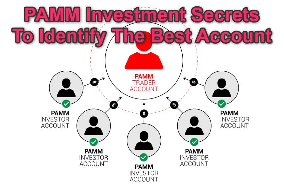 How Invest PAMM Accounts